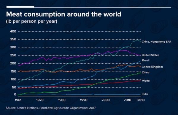 Muovi modelli di consumo di carne in America